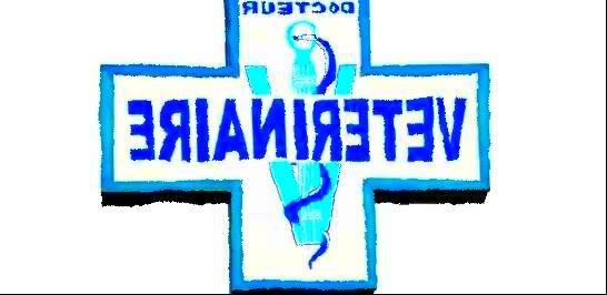 veterinaire.jpg